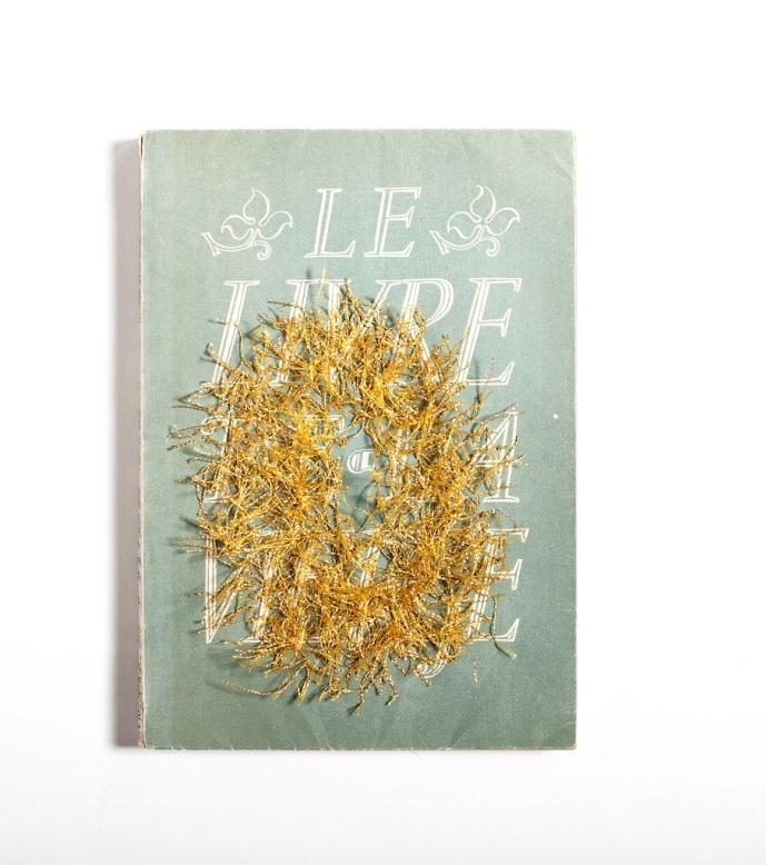 Le livre de la vierge